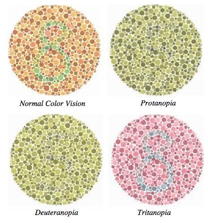 Cos 39 il daltonismo - Tavole di ishihara test ...